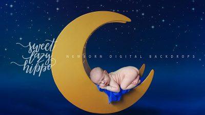 Newborn_backdrop_SweetLazyHippo0029.jpg