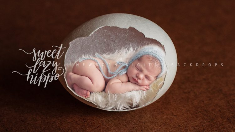 newborn_backdrop_sweetlazyhippo020.jpg