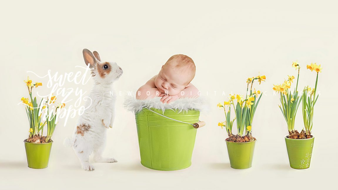 Easter Backdrops