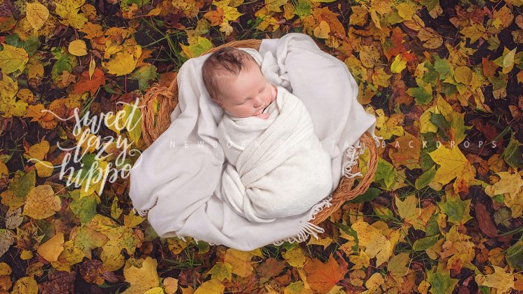 newborn_backdrop_sweetlazyhippo19_01.jpg